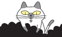 hazy #004 고양이