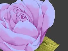 꽃꼬로꽃꽃...